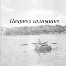 Сковородников Юрий Неяркое солнышко.jpg